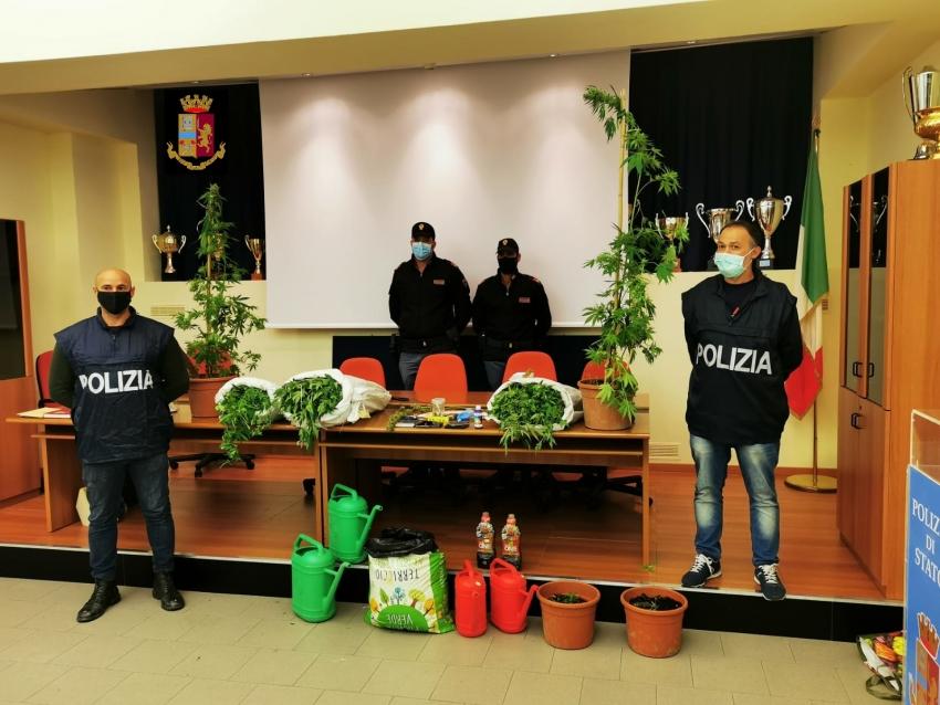 Polizia scopre piantagione di marijuana, arrestati due materani
