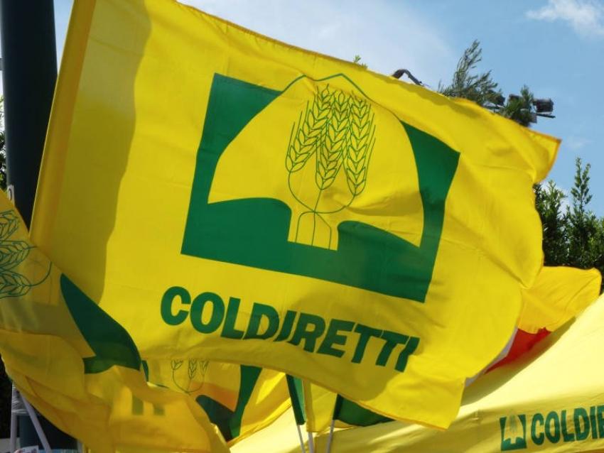 La Coldiretti presenta progetto di valorizzazione delle filiere agroalimentari