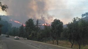 Incendio in località Varre di Pisticci. Fiamme per tutta la notte, si attende la stima dei danni.