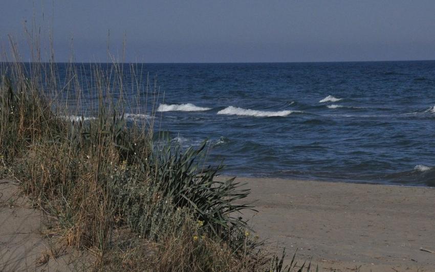 Incontro tra amministrazione, balneari e servizio salvataggio per programmare la stagione estiva di Marina di Pisticci