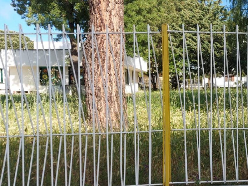 """Scuola: i genitori della scuola """"Collodi"""" di Marconia chiedono maggiore attenzione per il verde del plesso scolastico"""